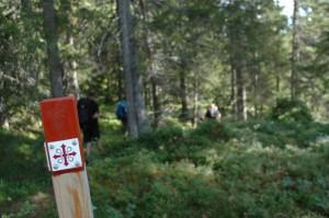 St Olavsleden, foto: Aktivut Ab